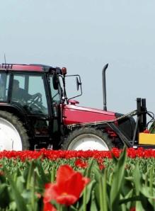 Trends in de agrarische sector